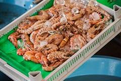 Vissenmarkt & Zeevruchten: Istanboel, Bosphorus Stock Fotografie