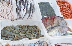 Vissenmarktkraam royalty-vrije stock foto's