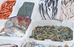 Vissenmarktkraam Royalty-vrije Stock Foto