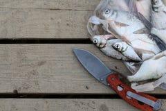 Vissenvangst de goudvis viel in het net Stock Fotografie