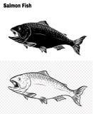 Vissenvector die met de hand trekken Stock Afbeelding