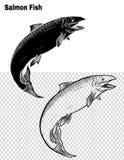 Vissenvector die met de hand trekken Stock Foto's