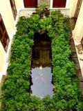 Vissenvijver en tuin in binnenplaats Royalty-vrije Stock Afbeeldingen