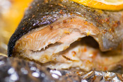 Vissenvoedsel royalty-vrije stock afbeelding