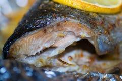 Vissenvoedsel royalty-vrije stock afbeeldingen