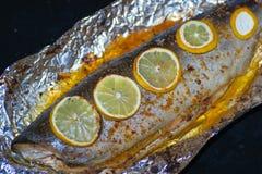 Vissenvoedsel stock afbeelding