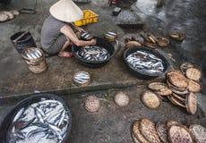 Vissenvoorbereiding op Hoi An-markt Stock Afbeelding