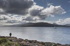 Visser bij Clach-Na Criche op het Geluid van Mull in Schotland royalty-vrije stock fotografie