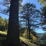 Visser in de afstand op een mooie zonnige dag Royalty-vrije Stock Fotografie