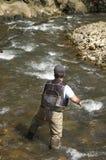 Visser in een rivier stock fotografie