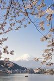 Visser en Fujisan in Kawaguchiko Stock Foto's