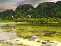 Visser op een groen meer in Vietnam tijdens zonsondergang stock foto