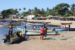 Visser op het strand van Los Cobanos Royalty-vrije Stock Fotografie