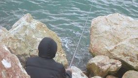 Visser op overzees op rotsen stock video