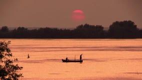 Visser werpen netto in een meer bij zonsondergang stock footage
