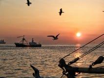 visserij Stock Afbeelding
