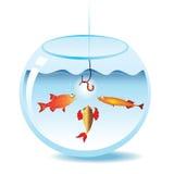 Visserij in fishbowl Royalty-vrije Stock Foto's