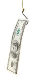 Visserij met het aas van het 100 dollarsbankbiljet op vishaak Stock Fotografie