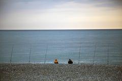 Visserij op de Zwarte Zee Vele hengels Het wachten op een Beet royalty-vrije stock afbeelding