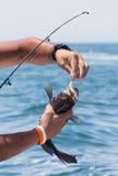 Visserij op het water Stock Foto