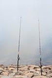 Visserij twee die, in een meer vissen, stock foto's