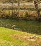 Visserij voor Forel op Smith River - 2 stock foto