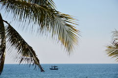 Visserijboot op het overzees achter kokosnotenblad Royalty-vrije Stock Foto