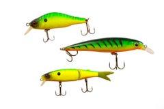 Visserijlokmiddelen voor roofzuchtige vissen stock afbeelding