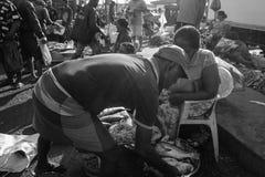 Visserijmarkt in Colombo, Sri Lanka Stock Foto's