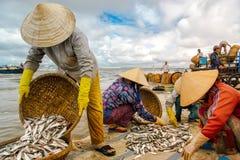 Visserijmarkt op strand Stock Afbeelding