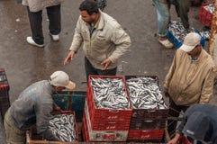 Vissers in de haven van Essaouira Royalty-vrije Stock Foto's
