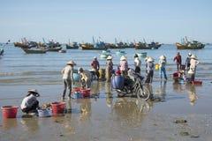 Vissers die de vangst van de nacht in het visserijdorp sorteren van Mui Ne vietnam Royalty-vrije Stock Foto