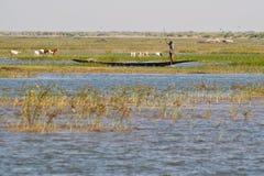 Vissers in pirogue in de rivier van Niger. stock afbeelding