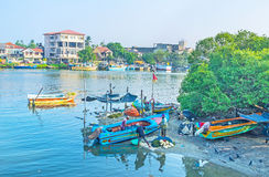 Vissers van Negombo Royalty-vrije Stock Foto