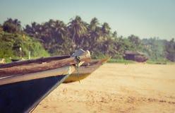Vissersboot op een tropisch strand Stock Afbeeldingen
