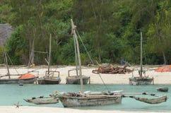 Vissersboot op het Eiland van Zanzibar Stock Foto's