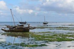 Vissersboot op het strand in het Eiland van Zanzibar Royalty-vrije Stock Afbeeldingen