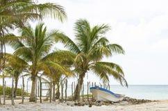 Vissersboot op strand met kokospalmen stock fotografie