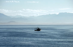 Vissersboot van de Vreedzame kust van Mexico Stock Afbeelding