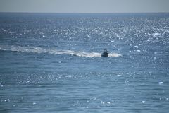 Vissersbootsnelheden in de Atlantische Oceaan in de Sleutels van Florida met medio dagzon die op water glimmen Stock Fotografie
