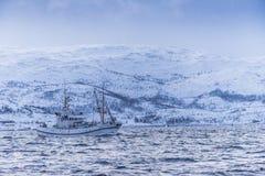 Vissersbootwintertijd Tromsø Noorwegen stock foto's