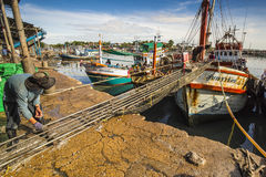 Vissersboten aan wal Stock Foto