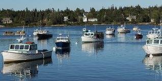Vissersboten in Bass Harbor Maine bij schemer worden vastgelegd die stock foto