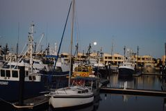Vissersboten bij de jachthaven van Havenlincoln, Zuid-Australië Stock Foto's