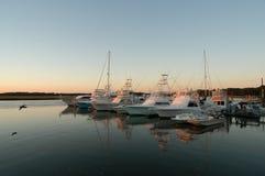 Vissersboten bij dok bij zonsondergang met zeemeeuw die langs vliegt Stock Foto's