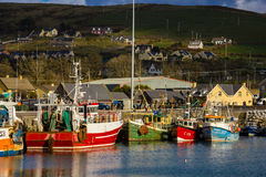 Vissersboten in de haven dingle ierland stock foto's