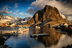 Vissersboten in de haven Lofoten, Noorwegen stock foto's