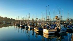 Vissersboten in de jachthaven in Nieuwpoort, Oregon royalty-vrije stock foto