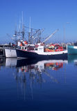 Vissersboten die in Haven Clarks worden verankerd stock afbeelding