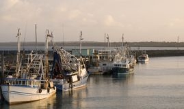 Vissersboten in Hervey Bay/Au stock afbeelding